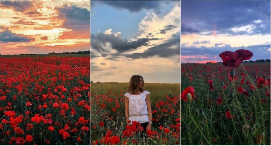 (foto) Petale roșii pe fundalul unui cer sângeriu. Cum arată câmpurile de maci înfloriți pe Instagram
