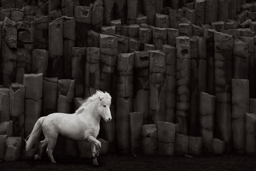 animal-photography-icelandic-horses-in-the-realm-of-legends-drew-doggett-23-5b5afbfb7f016__880