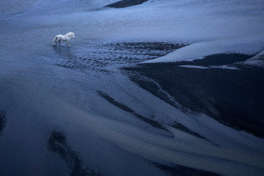 animal-photography-icelandic-horses-in-the-realm-of-legends-drew-doggett-29-5b5afc06e4e11__880