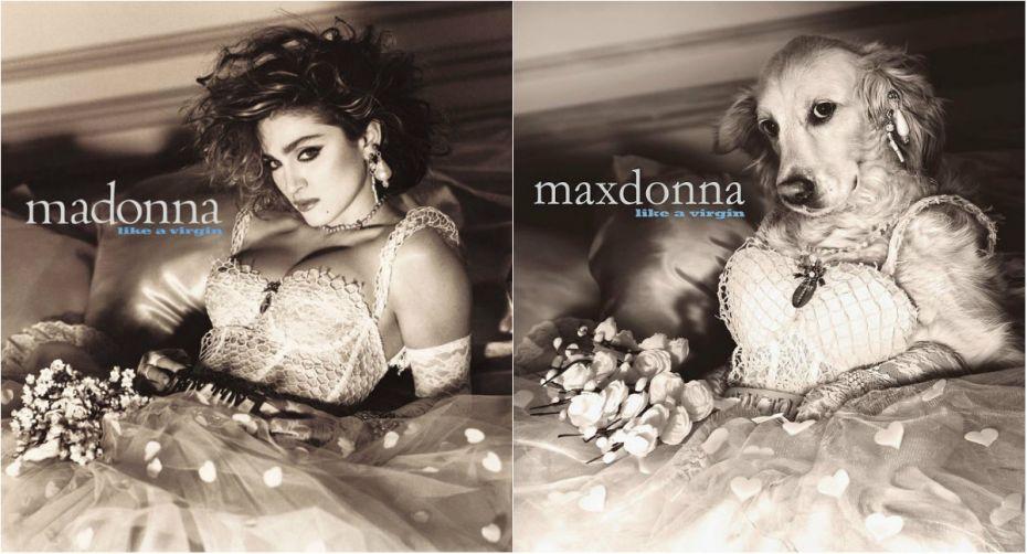 collage madona 2