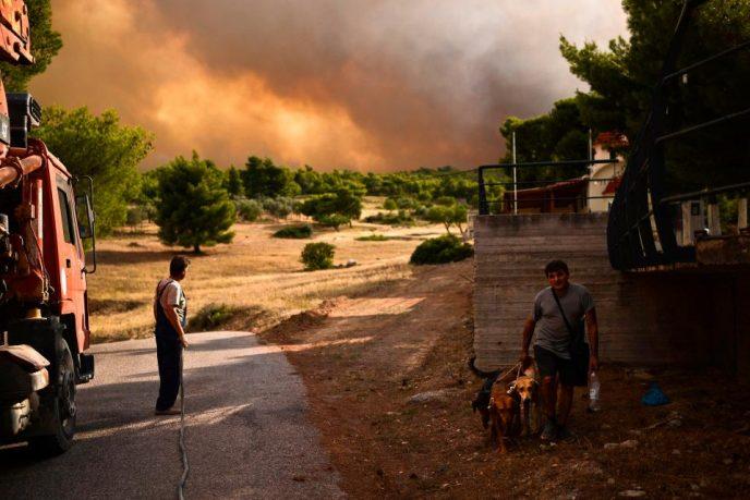 incendiu grecia15