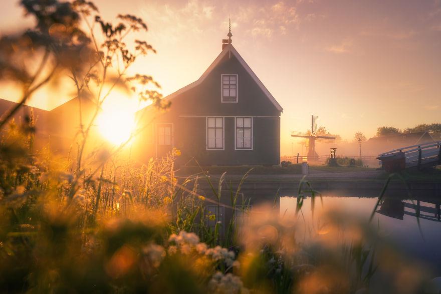 olanda dimineața4