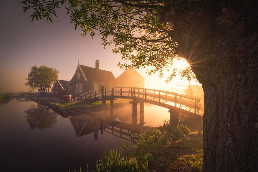 olanda dimineața6