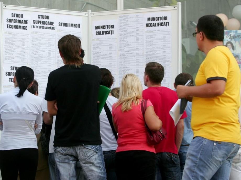 (doc) 79% din posturile vacante din Moldova nu necesită studii superioare. Unde poți să te angajezi