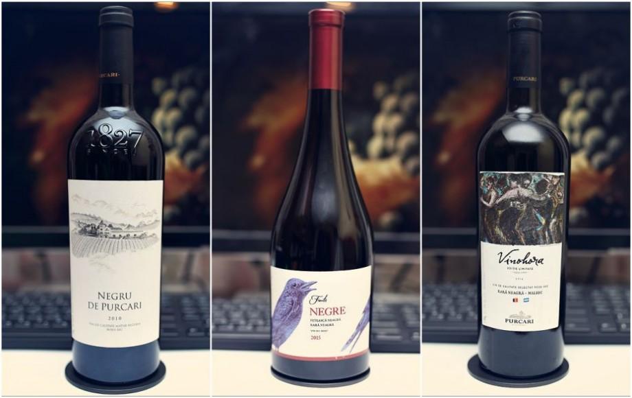 """""""VINARIUM – 100 de vinuri reprezentative românești"""". Lista celor 11 vinuri din Moldova incluse în selecția dedicată Centenarului"""