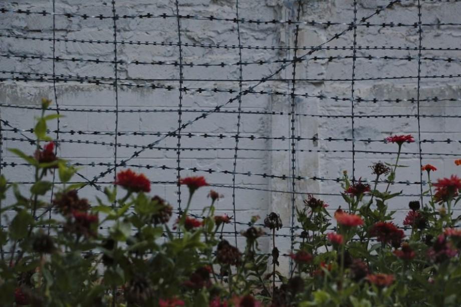 (galerie foto) Penitenciarul de la Goian – locul unde florile răsar, iar oţelul ruginește