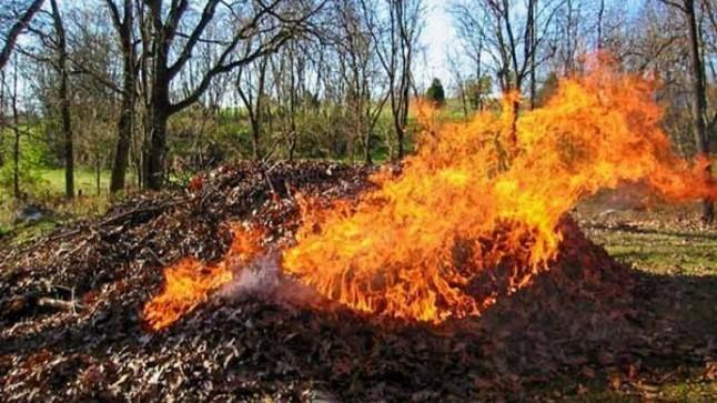 """Ce daune asupra sănătății omului și naturii provoacă arderea frunzelor. """"Gospodarii"""" riscă amenzi de până la 15.000 de lei"""