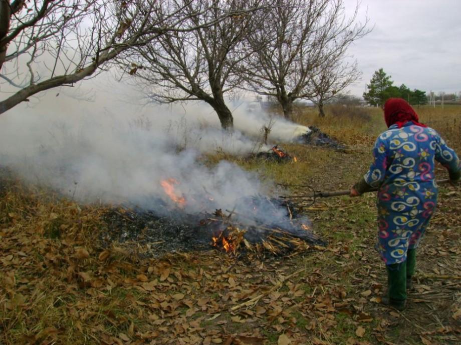Amenzi de până la 9 mii de lei pentru persoanele care vor arde frunzele și deșeurilor menajere