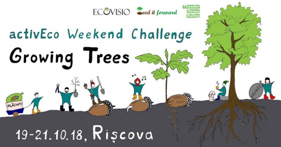 Învață să plantezi arbori trainici la un nou workshop de weekend, împreună cu EcoVisio