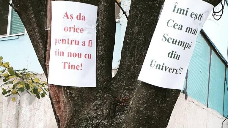 (foto) Copacul iertării sau cum un tânăr din Chișinău încearcă să-și convingă iubita să-l ierte