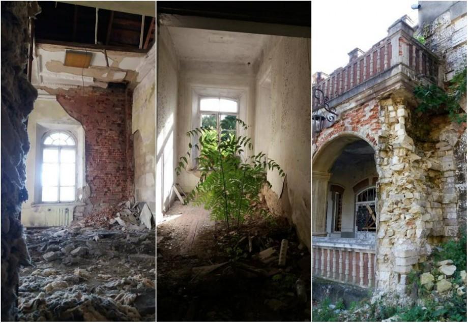 (foto) În ruină și cu arbuști care cresc în camere. Cum arată în interior Conacul Pommer din parcul Țaul