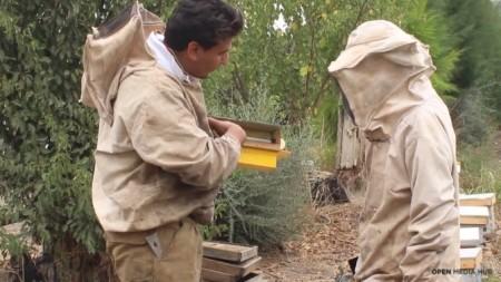 (foto) Faptele bune continuă. Un pomicultor din Soroca invită trecătorii sa mănânce mere din livada sa