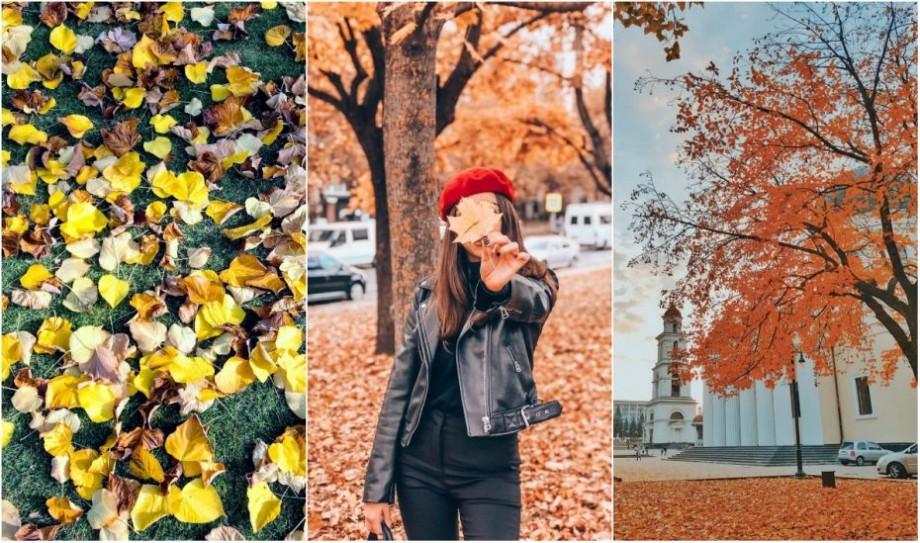 """""""Frunzele cad, zbor în aer"""". Cum se vede începutul de noiembrie prin filtrele colorate de pe Instagram"""