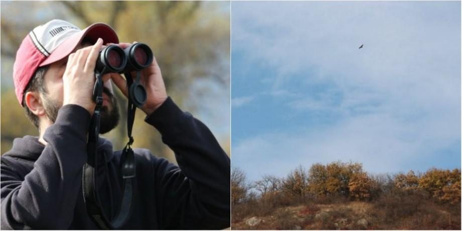 """(foto, video) În Moldova a fost lansată o nouă destinație turistică. """"Birdwatching-ul"""" devine tot mai popular în Europa"""