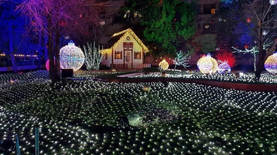 (doc) Bradul în PMAN, iar Târgul de Crăciun pe strada 31 august. Primăria Capitalei a semnat o dispoziție în acest sens