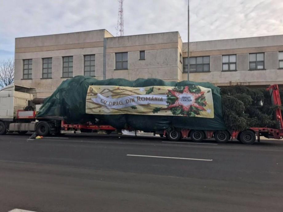 (foto, video) Pomul de la Târgul de Crăciun a trecut Prutul. Cum arată acesta