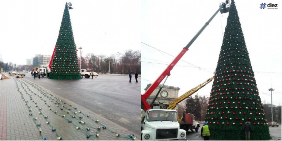 (foto) Bradul din PMAN a fost instalat și împodobit. Cum va arăta în acest an pomul de Crăciun