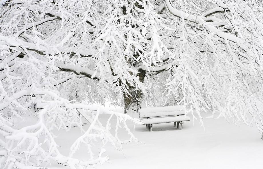 Evenimentele sub zăpada de ianuarie! Ce ne așteaptă vineri, 11 ianuarie 2019
