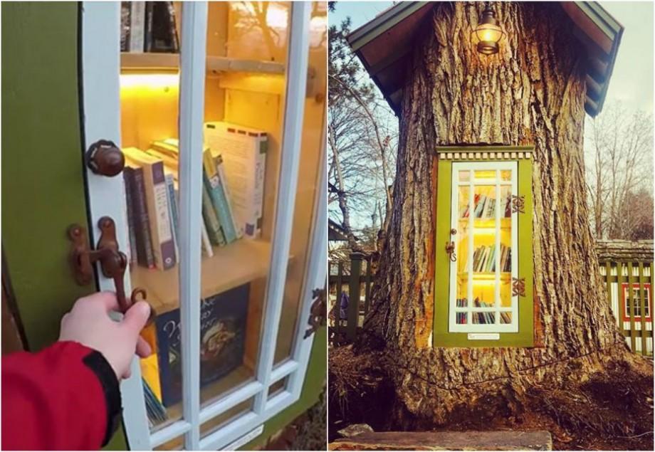 """(foto) """"A trebuit să sculptăm un copac uriaş"""". Cum o tânără a salvat copacul din fața casei și l-a transformat într-o bibliotecă"""