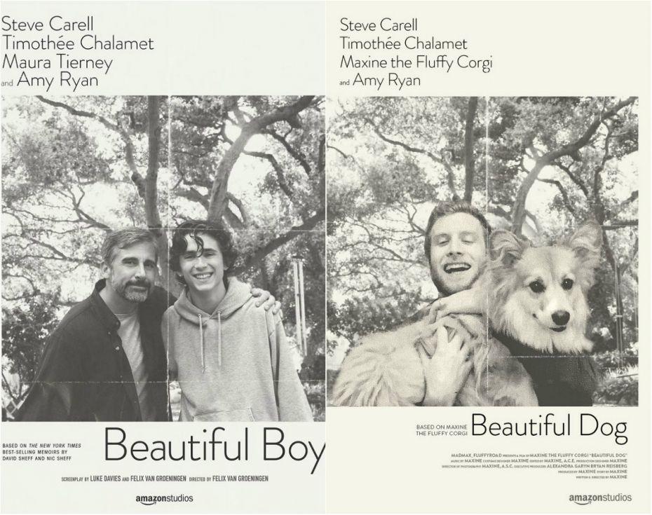 collage film 1154
