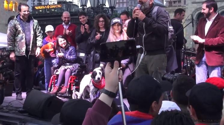 (video) A salvat câinele revoluționar din Erevan și multe alte animale. Istoria unei tinere veterinare
