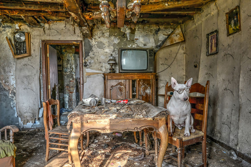 me-and-my-dog-explore-abandoned-places-across-europe-12__880