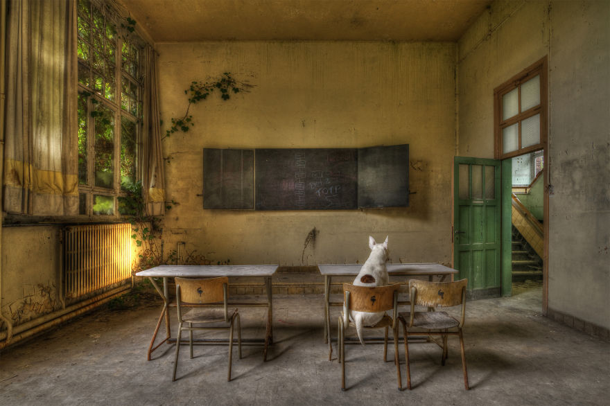 me-and-my-dog-explore-abandoned-places-across-europe-7__880