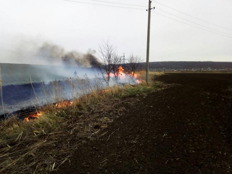 (foto, video) În ultimile 24 de ore au suferit în urma incendiilor de vegetație peste 400 ha de teren