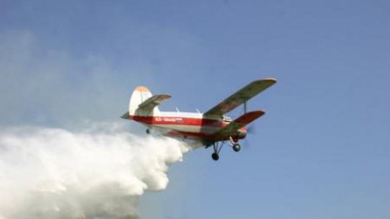 """""""Moldsilva"""" va efectua combatere aeriană împotriva dăunătorilor şi bolilor forestiere"""