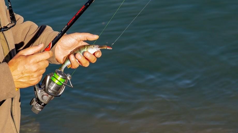 Perioada de prohibiție la prins pește s-a terminat. Ce trebuie să știi dacă vrei să mergi la pescuit