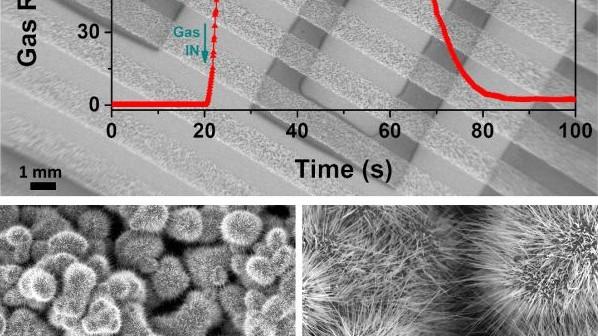 Cercetătorii UTM în colaborare cu savanții din Germania au realizat o premieră internațională în domeniul nanoștiinței