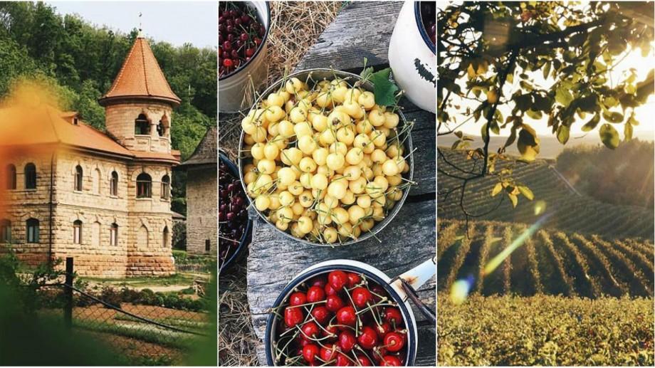 Gustă din merele Moldovei și plimbă-te la apus prin levănțică. Cel mai tradițional profil de Instagram