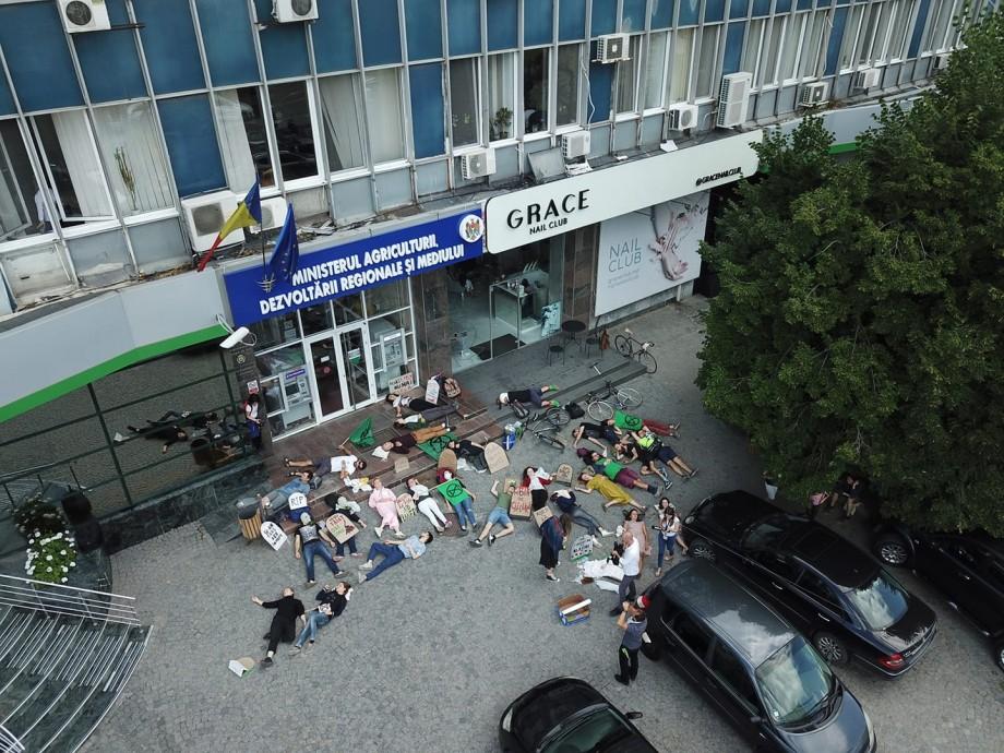 """(foto) """"Au murit"""" pentru mediu. Câțiva tineri au organizat un protest neobișnuit în fața Ministerului Agriculturii"""