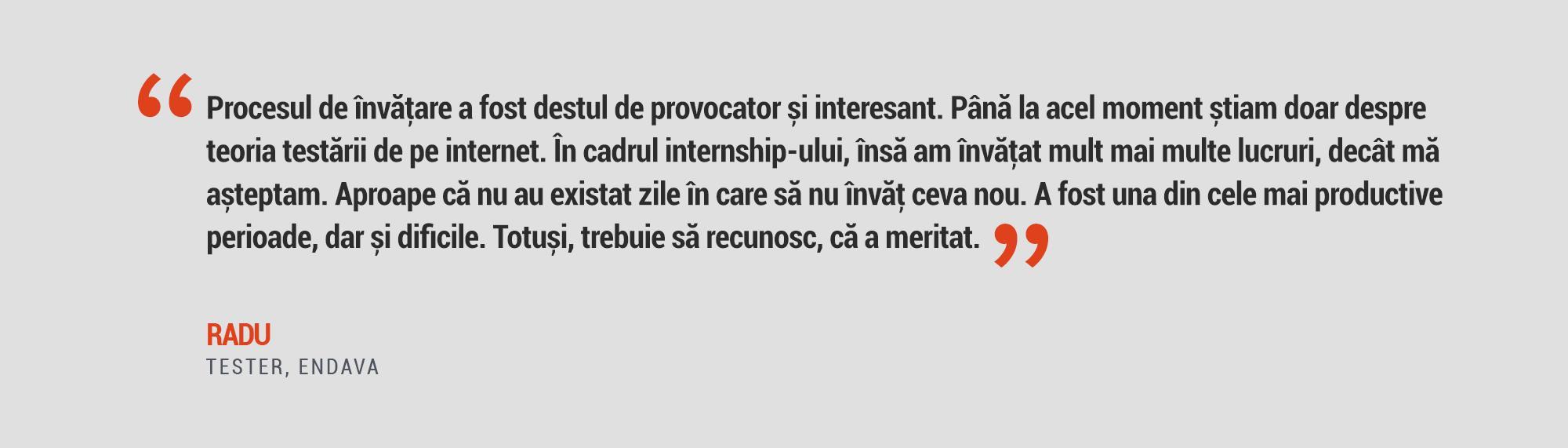 Radu Rosca Quote