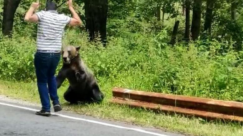 (video) Un tânăr la un pas să fie sfâșiat de un ursul, pe care a vrut să îl hrănească