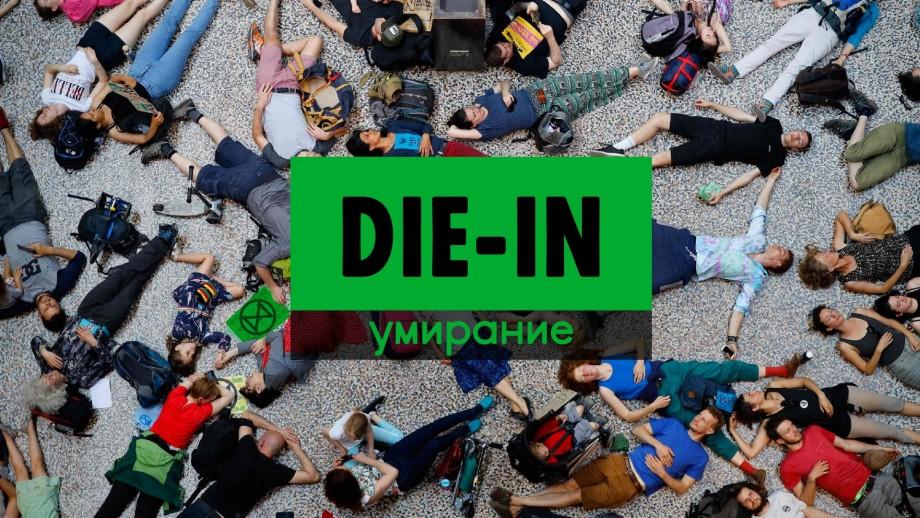 """La Chișinău se anunță un protest mai puțin obișnuit: se va """"muri"""" pentru mediu în fața Ministerului Agriculturii"""