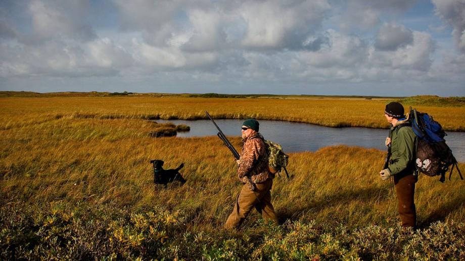 Guvernul a aprobat termenele de vânătoare pentru 2019 – 2020. Ce specii pot fi vânate și în ce perioadă
