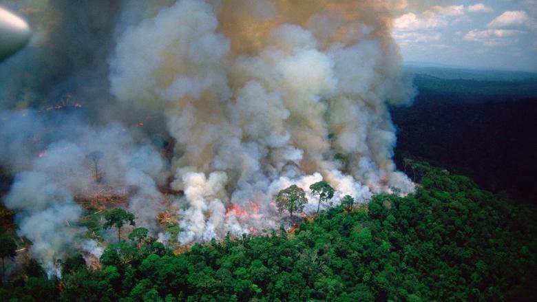 Președintele Braziliei a mobilizat armata țării pentru stingerea incendiilor din Pădurea Amazoniană