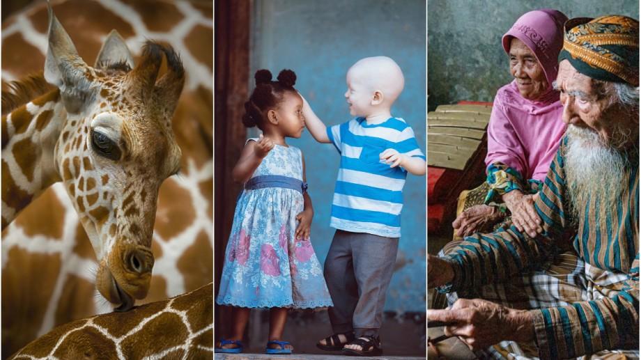 """(foto) """"Love is…"""". Cum văd dragostea 40 de fotografi din întreaga lume"""