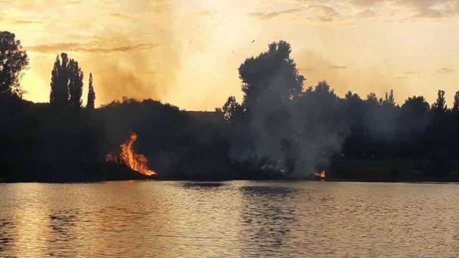 """(foto) Incendiu în parcul """"La Izvor"""". La fața locului au intervenit pompierii"""