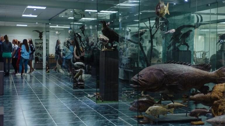 (foto) Ghidul #diez: Cunoaște istoria Muzeului de Ştiinţe Naturale al USM
