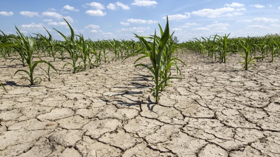 Meteorologii au prelungit codul galben de secetă hidrologică pe întreg teritoriul țării
