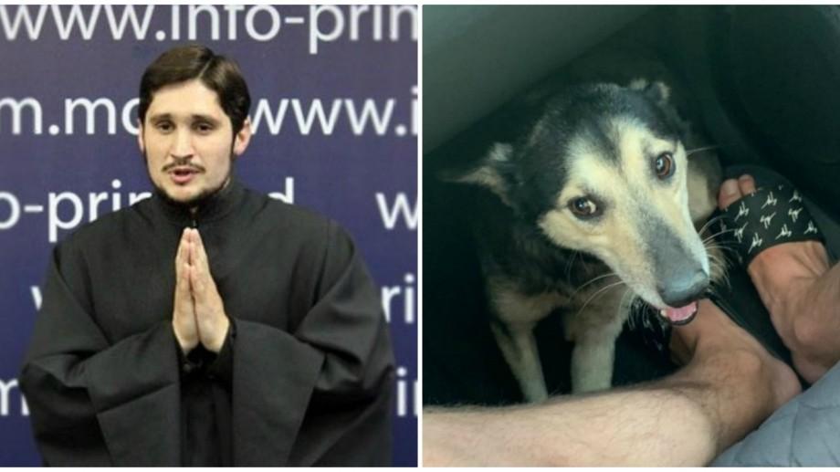 Procuratura raionului Anenii Noi refuză să inițieze urmărire penală pe numele lui Văluță, în cazul câinelui legat de mașină și târât cu lanțul