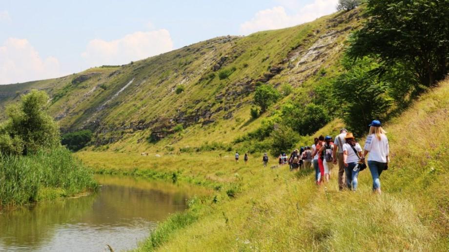 Descoperă primul traseu de birdwatching din Republica Moldova pe o hartă interactivă