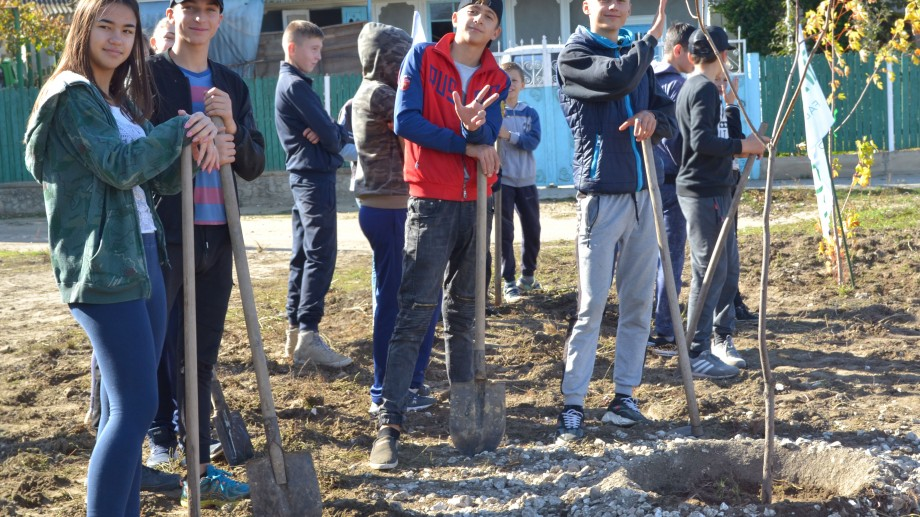 """(foto, video) Un mobilier cumpărat, un copac plantat. Fabrica de mobilă Tandem a organizat cea de a doua ediție a campaniei Plantăm pentru Moldova"""""""