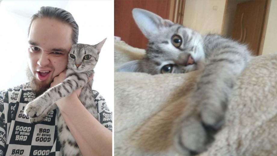 (foto) Un tânăr din Chișinău găsește adăposturi pentru animalele fără casă. Cum îl puteți ajuta