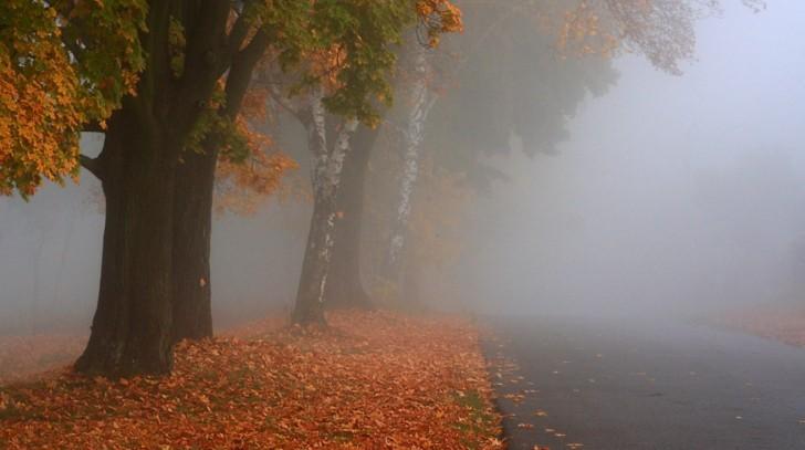 La alegeri, tot prin ceață! Meteorologii au prelungit codul galben până pe 20 octombrie