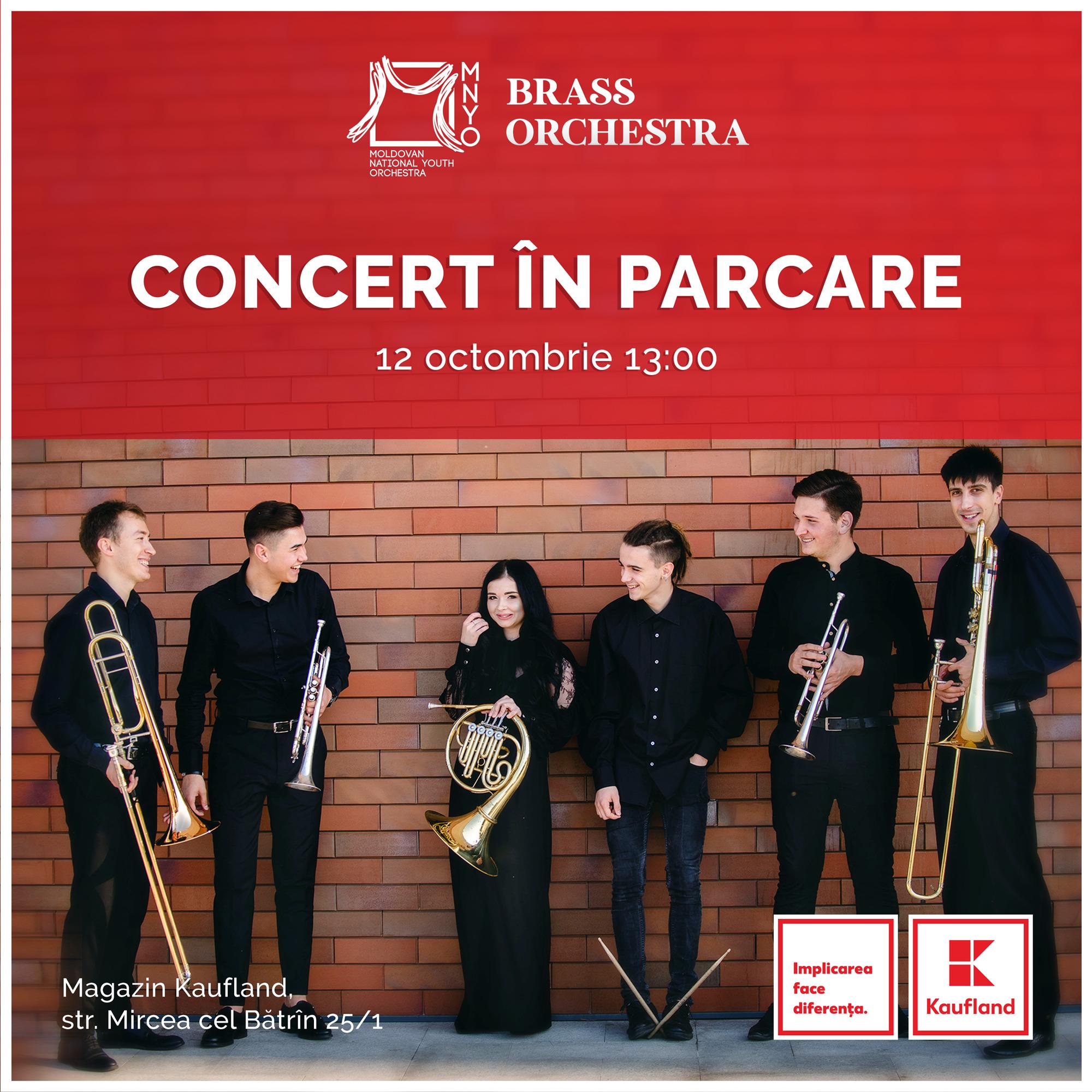 square_ConcertinParcare