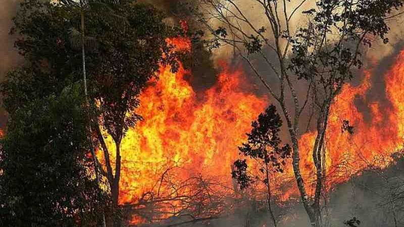 """""""Nu aprindeți ruguri și nu dați foc frunzelor și vegetației uscate."""" Pompierii atenționează populația în raport cu codul galben enunțat"""
