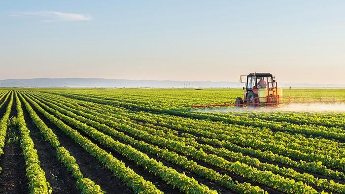 Câți agricultori au depus cereri de subvenții pentru anul următor